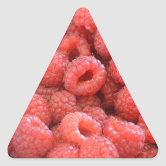 Bright Pink Raspberries - Fruity and Fun Triangle Stickers