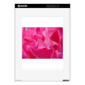 Bright Pink Rose Petals iPad Skins