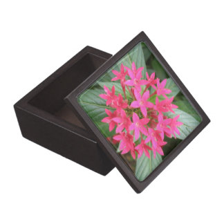Bright Pink Tropical Flowers Premium Gift Box