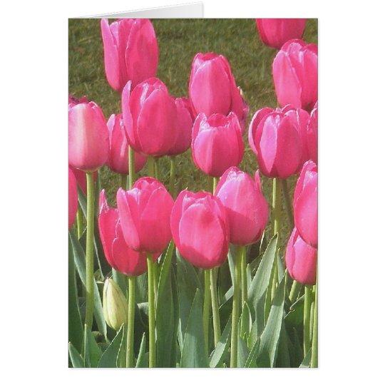Bright Pink Tulip Garden Card