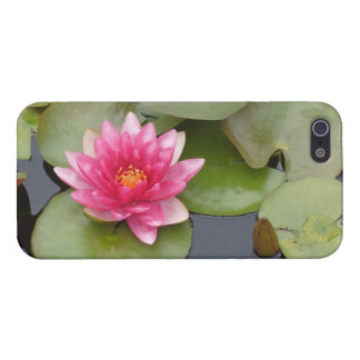Bright Pink Water Lily Flower Case For iPhone SE/5/5s