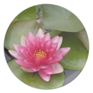 Bright Pink Water Lily Flower Dinner Plate