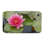 Bright Pink Water Lily Flower iPhone 3 Cases