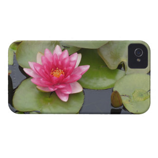 Bright Pink Water Lily Flower iPhone 4 Covers