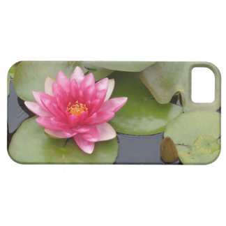 Bright Pink Water Lily Flower iPhone SE/5/5s Case
