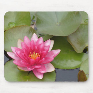 Bright Pink Water Lily Flower Mouse Pad