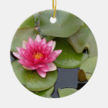 Bright Pink Water Lily Flower Ornament