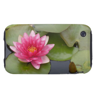 Bright Pink Water Lily Flower Tough iPhone 3 Covers