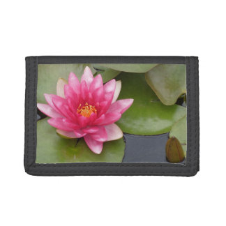 Bright Pink Water Lily Flower Tri-fold Wallet