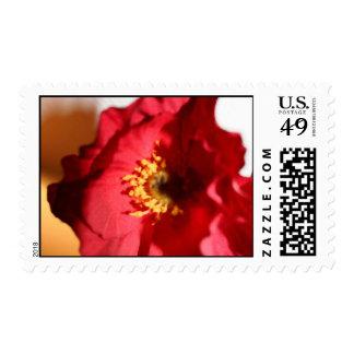 Bright Poppy Stamp