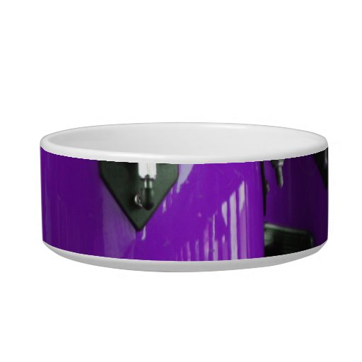Bright purple conga drums photo cat water bowl