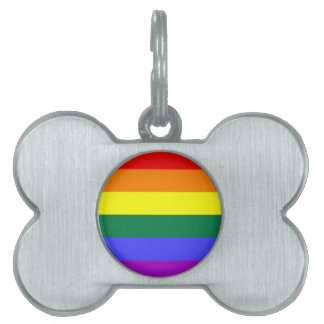Bright rainbow pattern. pet ID tag