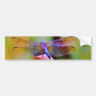 Bright Rainbow Pink Dragonfly Bumper Stickers