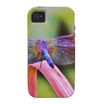 Bright Rainbow Pink Dragonfly iPhone 4 Case