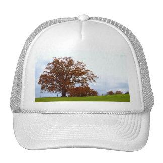 Bright Red Autumn Tree Nature Photo Trucker Hat