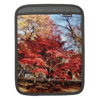Bright Red Autumn Tree Sleeves For iPads