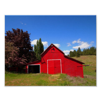 Bright red barn poster