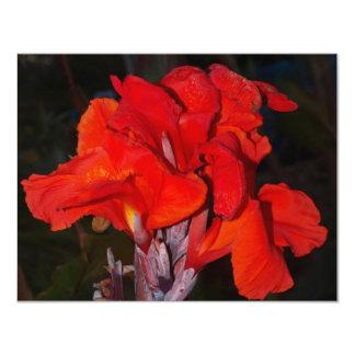 Bright Red Canna Lily Custom Invitations