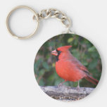 Bright Red Cardinal Keychains