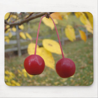 Bright Red Crab Apples Mousepad