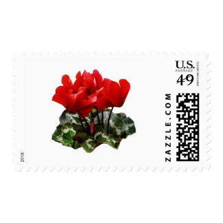 Bright Red Cyclamen Postage