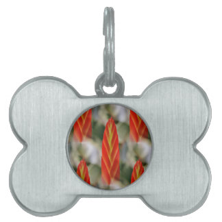 Bright Red Flaming Sword Spike Pet ID Tag