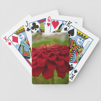 Bright Red Flower (Gift) Bicycle Playing Cards