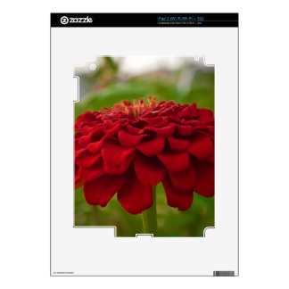 Bright Red Flower (Gift) Decals For iPad 2