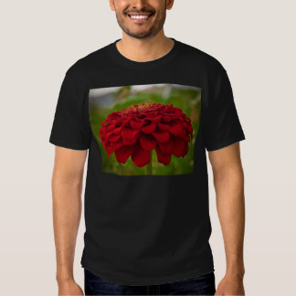 Bright Red Flower (Gift) T Shirts