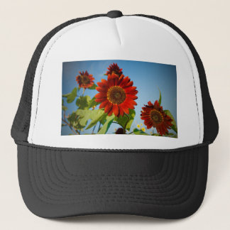 Bright Red Flowers in the Sun Trucker Hat