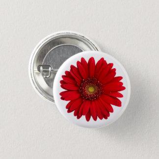 Bright Red Gerbera Daisy Flower Button