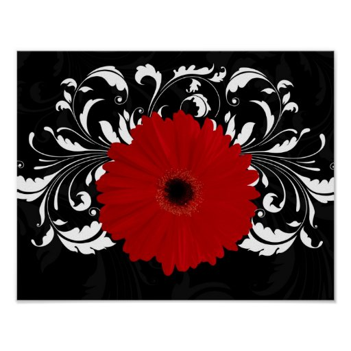Bright Red Gerbera Daisy on Black Posters