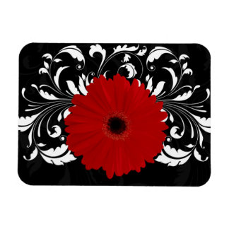 Bright Red Gerbera Daisy on Black Flexible Magnets