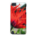 Bright Red Poppy Flower iPod Touch (5th Generation) Cases