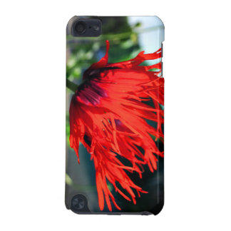 Bright Red Poppy Flower iPod Touch 5G Cover