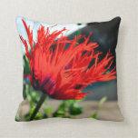 Bright Red Poppy Flower Pillow
