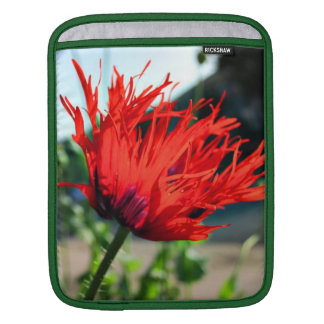 Bright Red Poppy Flower Sleeves For iPads