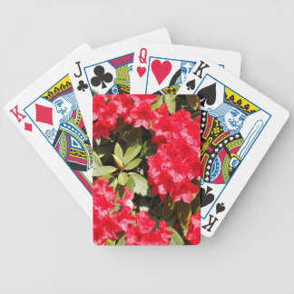 Bright Red Rhododendron Flowers Bicycle Card Deck