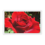 Bright Red Rose Flower Beautiful Floral Acrylic Tray