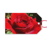 Bright Red Rose Flower Beautiful Floral Gift Tags