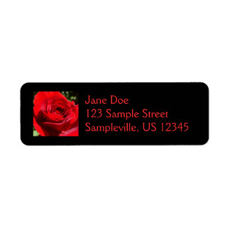 Bright Red Rose Flower Beautiful Floral Label