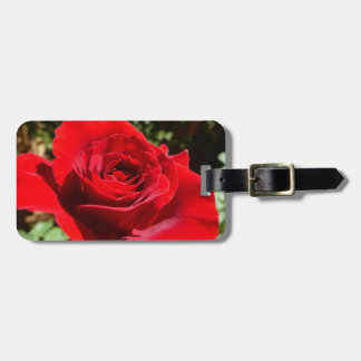 Bright Red Rose Flower Beautiful Floral Tags For Bags