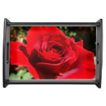 Bright Red Rose Flower Beautiful Floral Serving Tray