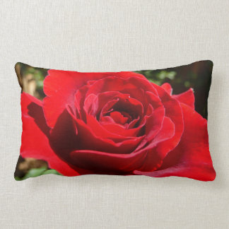 Bright Red Rose Pillow