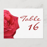 Bright Red Rose Table Number Cards Postcard