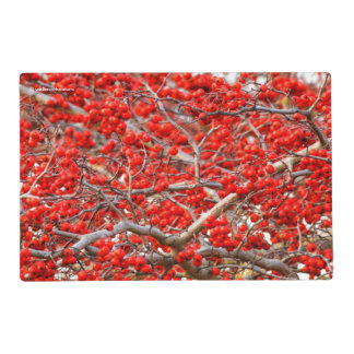Bright Red Winterberries Holly Tree Berries Placemat