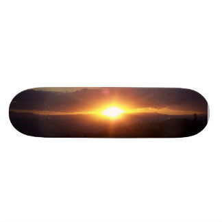 bright skateboard