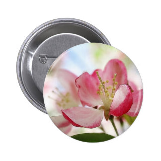 Bright Spring Apple Blossoms Buttons