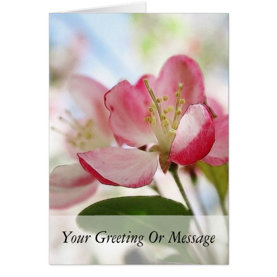 Bright Spring Apple Blossoms Card