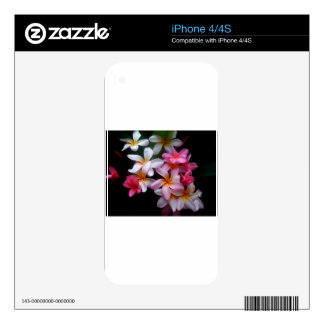 Bright Spring Pink Flower Cluster iPhone 4S Decal